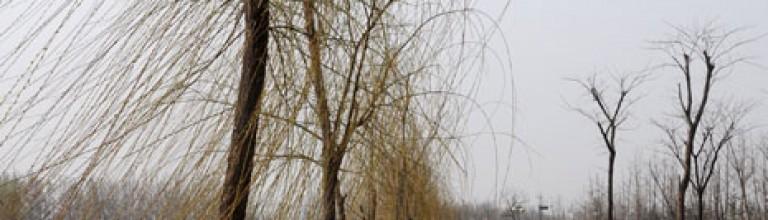 2012.3.18泾渭运动中心